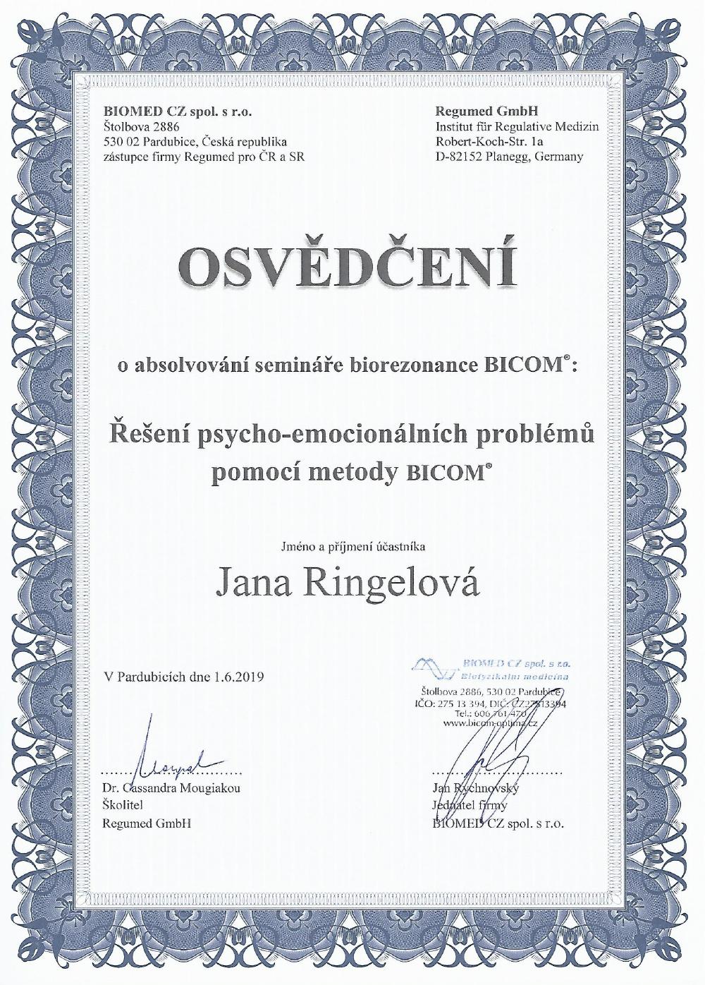 Seminář o řešení psycho-emocionálních problémů pomocí metody BICOM